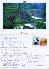Bali - Stunningly beautiful rice terrace hug the island's well-waterred volcanic slopes - 2004