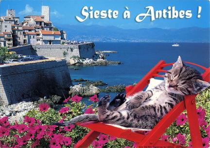 Sieste à Antibes - Chat dormant assis sur une chaise rouge face aux remparts - 2007