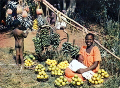 Afrique - Marchande de fruits - 1963 - recto